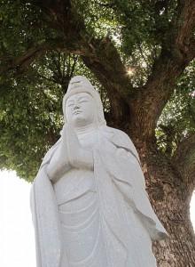 樹守り観音|石彫刻 /石仏・ 狛犬・創作|京都の石屋 / 特注品|芳村石材店