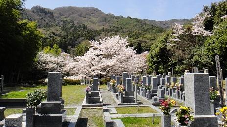 京都, 墓地, 霊園, 花の寺, 勝持寺, 西京区, 聖地, 墓石