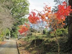 京都, 墓地, 霊園, 南丹市, 八木,西光寺, 永代供養墓, 納骨堂
