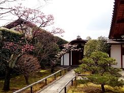京都, 墓地, 霊園, 北区, 大徳寺, 興臨院, 紫野