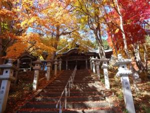 京都霊園,墓地,墓石, 西光密寺