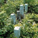 お墓の修理・リフォームプラン(施行前)