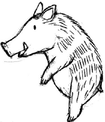 猪手水鉢ラフ画